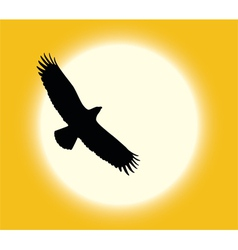 desert eagle vector image vector image
