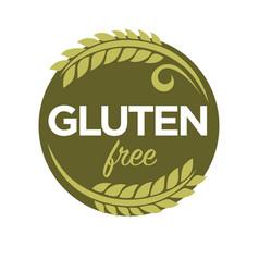 Gluten free substance in cereal grains elastic vector