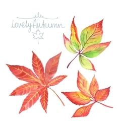 Watercolor autumn leaves vector