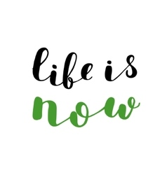 Life is now brush lettering vector