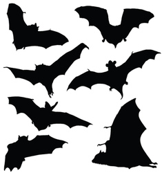 Bat black silhouette vector