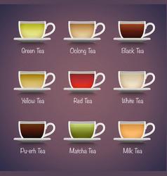 Tea types infographics vector