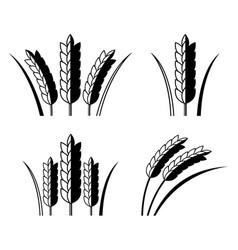 Icon rice vector