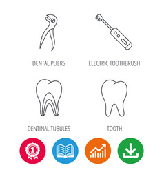 Tooth electric toothbrush and pliers icons vector