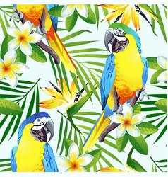 tropic birds vector image