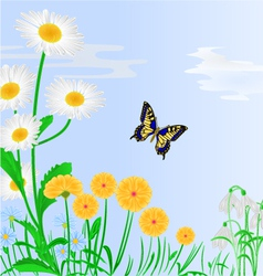 Spring flowers and butterfly blue background vector