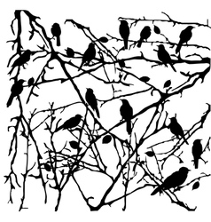 branches with birds vector image vector image