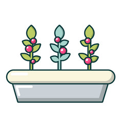 outdoor potted plants icon cartoon style vector image vector image