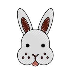 rabbit head isolated icon vector image