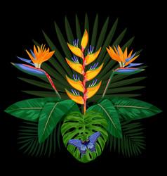 tropical bouquet composition vector image vector image