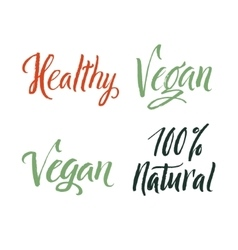 Vegan 100 percent natural healthy hand drawn vector