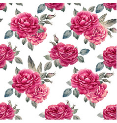watercolor rose seamless pattern vector image vector image