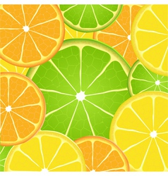 Citrus fruit slice background vector image