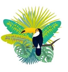 Toucan bird for tshirt apparel vector image