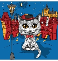 Cat in prague prague castle and charles bridge vector