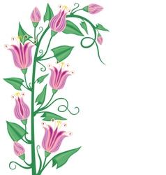 Flowering bindweed vector image