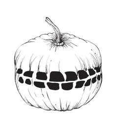 Hand drawn halloween pumpkin with a teeth vector