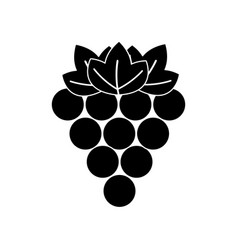 black contour grapes fruit icon image vector image vector image