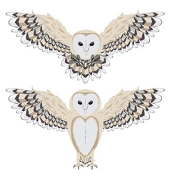 Cartoon barn owl2 vector
