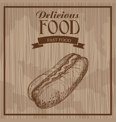 delicious food hot dog fast food hand drawn vector image
