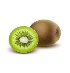 Whole and half cut kiwi vector