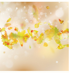 autumn leaves theme background eps 10 vector image