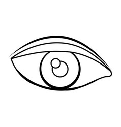Silhouette drawing of eye with eyebrow vector