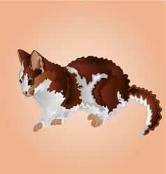 Tabby kitten sitting cute feline vector