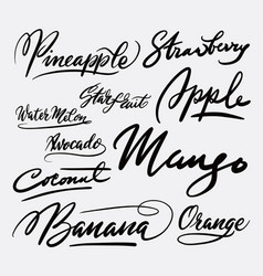 Mango fruit and strawberry hand written typography vector