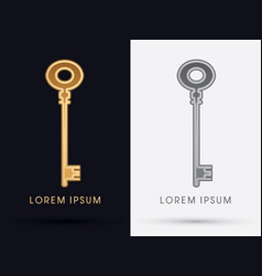 Luxury key vector