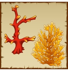 Two underwater coral red and yellow variety vector