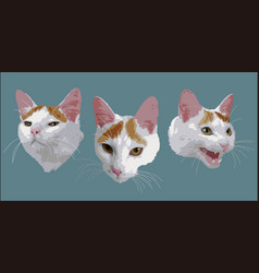 Faces of a cat vector