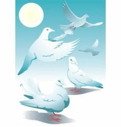 Pigeons vector