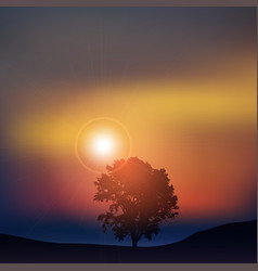 tree at sunset vector image vector image