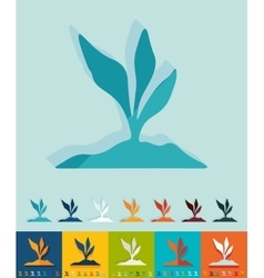 Flat design root-crop vector