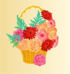 Roses and gerber as in a basket festive background vector