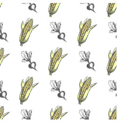 corn cob and monochrome sweet beet endless texture vector image vector image