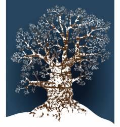 snow oak vector image