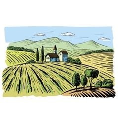 Landscape with agrarian fields vector