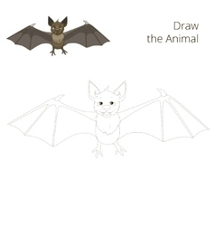 Draw the forest animal bat cartoon vector