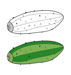 Cucumber black and white for vector