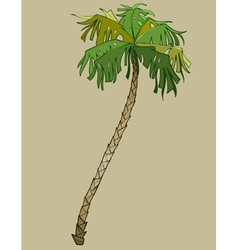 cartoon bent coconut tree without coconuts vector image vector image