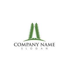 Cedar tree logo template vector