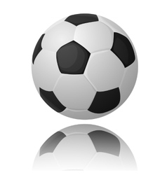 Realistic soccer with reflection ball vector image