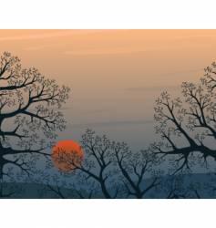 winter wood vector image vector image