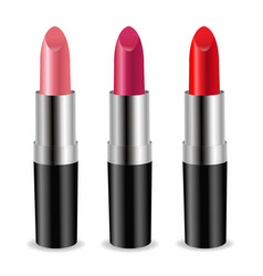 color lipstick set vector image