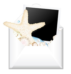 Open envelope with photo and starfish vector