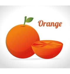 Orange fruit icon graphi vector image
