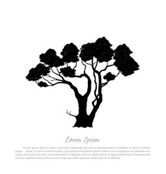 black silhouette of a tree on white background vector image
