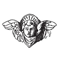 Cherub head was used on a candelabrum in certosa vector